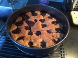 Photo of Plum Torte